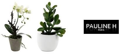 vente privée Pauline H