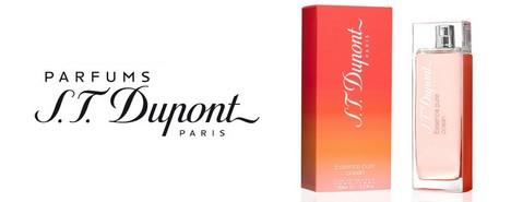 vente privée S.T. Dupont
